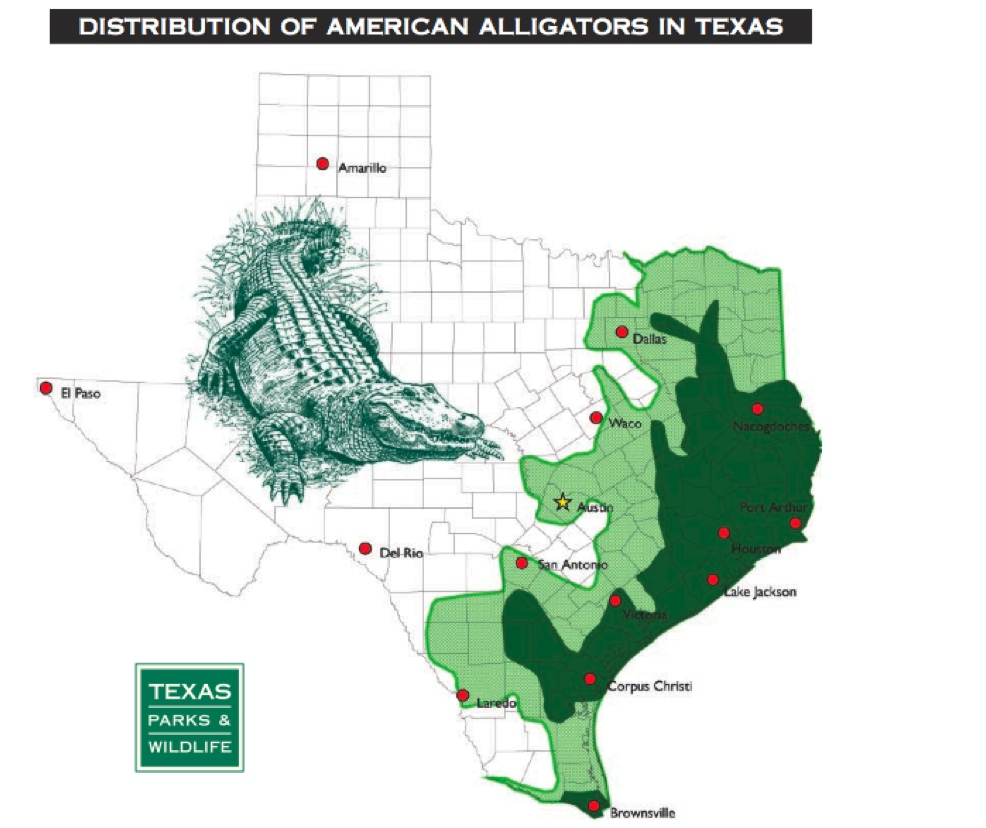 Alligators In Texas Map Alligators In Texas Map | World Map 07